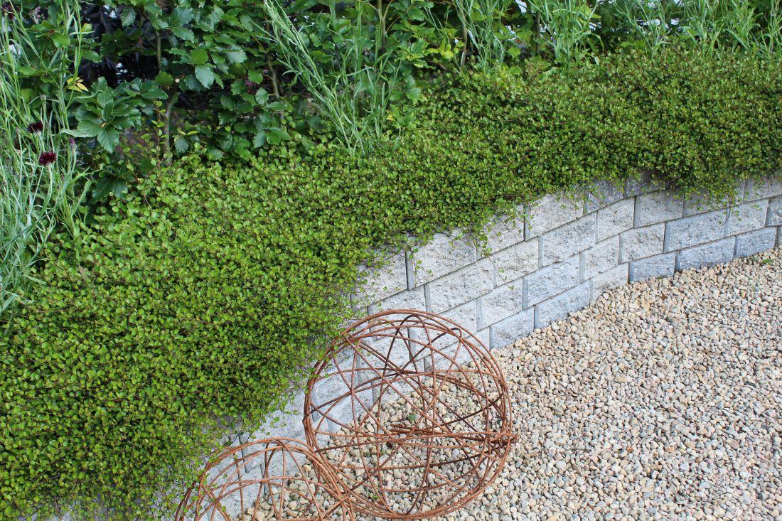 5 nøkler for å skape helhet i hagen, Pletter i luften