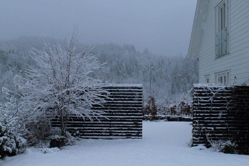Gjerde i vinterhagen